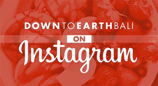 DTE Bali on Instagram