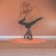 Probiotics: Creating Balance